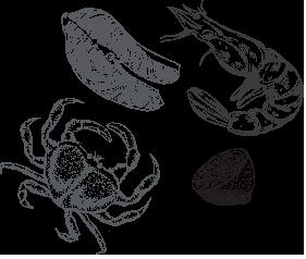 Seafood fruits de mer