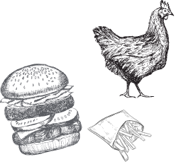 Poulet burger et frites
